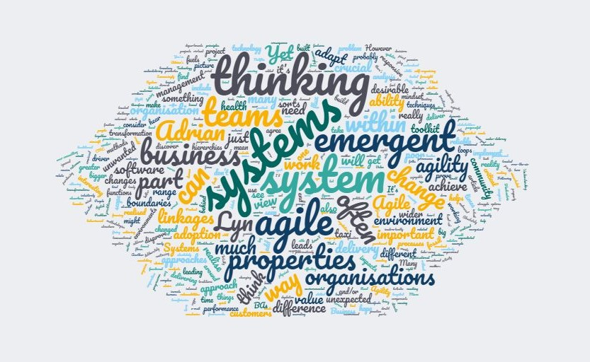 Wordcloud of key words relating to agility and systems thinking
